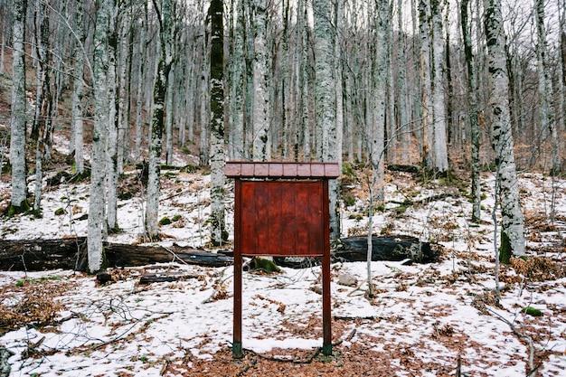 Leere stationäre hölzerne staffelei im winterwald zwischen birken