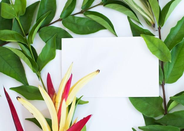 Leere visitenkarten im stapel, durch eigenes bild zu ersetzen.