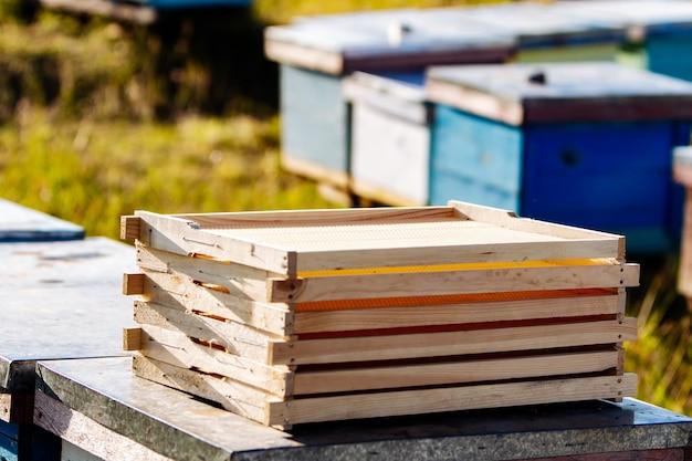 Leere waben in der nähe von bienenstöcken. rahmen für bienenwabe. bienenwachs. wachsbasis für den wiederaufbau der honigbiene auf einem bienenstockhintergrund. waben.