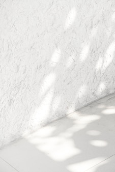 Leere weiße ecke mit tropischem blattschatten