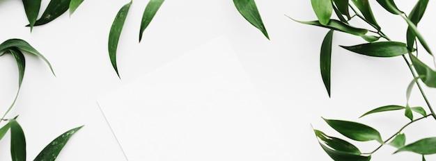 Leere weiße karte grüne blätter auf weißem hintergrund als botanischer rahmen flatlay hochzeitseinladung und ...