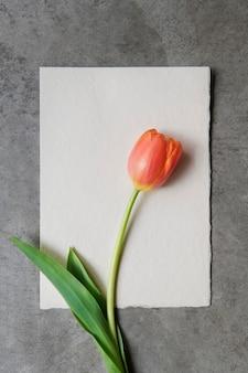 Leere weiße karte mit einer tulpe