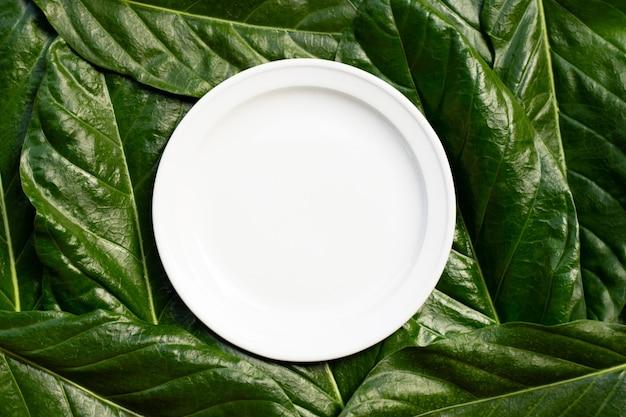 Leere weiße keramikplatte auf noni oder morinda citrifolia hinterlässt hintergrund.