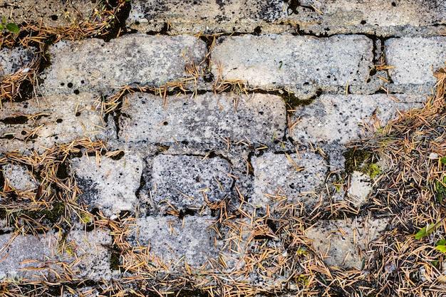 Leerer hintergrund alte backsteinmauer bedeckt mit moos.