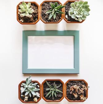 Leerer leerer fotorahmen mit kopienraum und zimmerpflanze für ihr