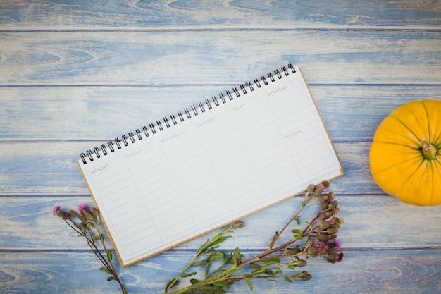 Leerer planer mit herbstkürbisen