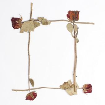 Leerer rahmen der trockenen rosen