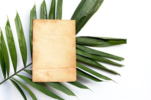 Leeres altes braunes papier auf tropischen palmblättern auf weiß