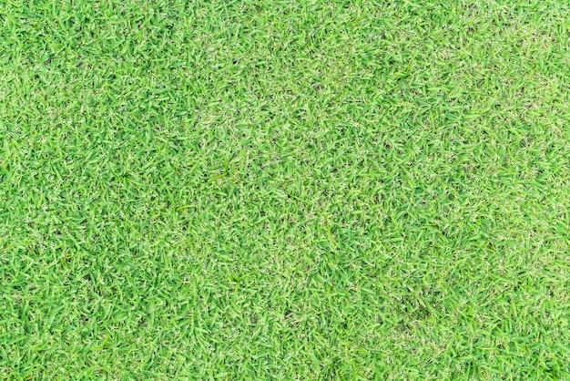 Leeres gras für den hintergrund