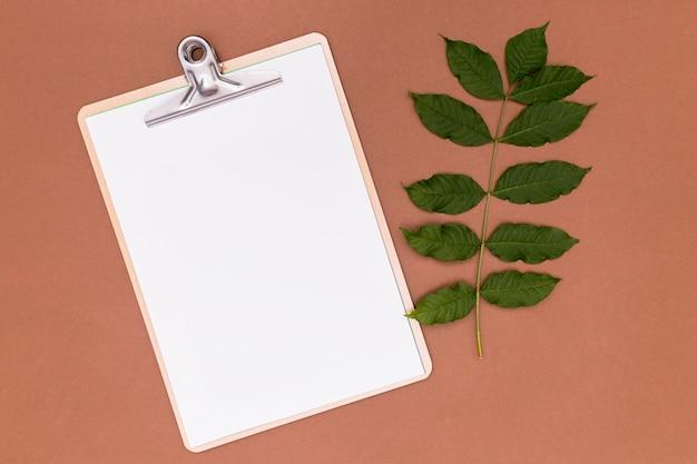 Leeres klemmbrett mit zweigblättern