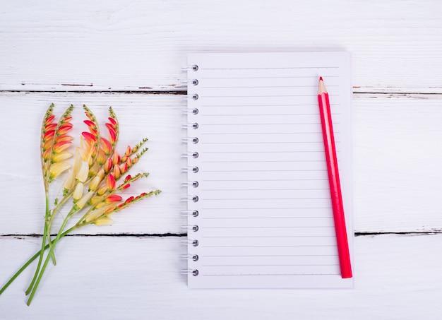 Leeres notizbuch in einer linie und in einem roten bleistift