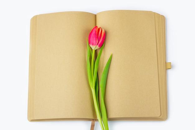 Leeres offenes tagebuch (notizbuch, skizzenbuch), verziert mit frühlingsroten tulpen mit platz für text oder schriftzug. konzept des schreibens von briefen, wünschen, zielen, plänen, lebensgeschichte. flach liegende modellfeder