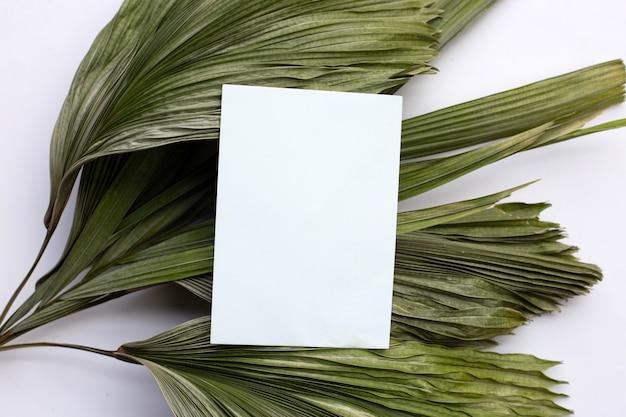 Leeres papier auf trockenen blättern der tropischen palme