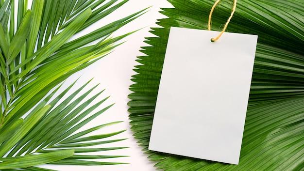 Leeres papier auf tropischem palmtrockenblatthintergrund. platz kopieren