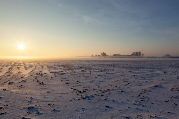 Leeres schneebedecktes feld mit nebel unter einem blauen himmel