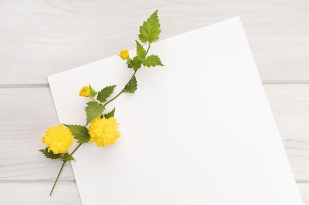 Leeres weißes papier, gelber blumenzweig auf holztisch