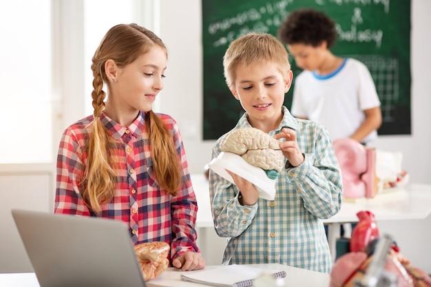 Lehrplan. freudiger netter junge, der ein menschliches gehirnmodell berührt, während er es studiert