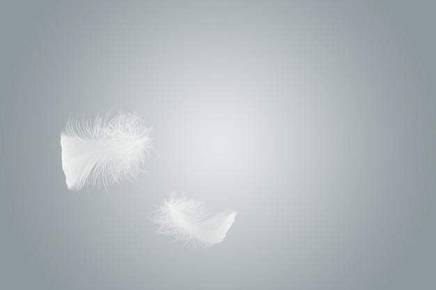 Leicht flauschig eine weiße feder, die in der luft schwebt.