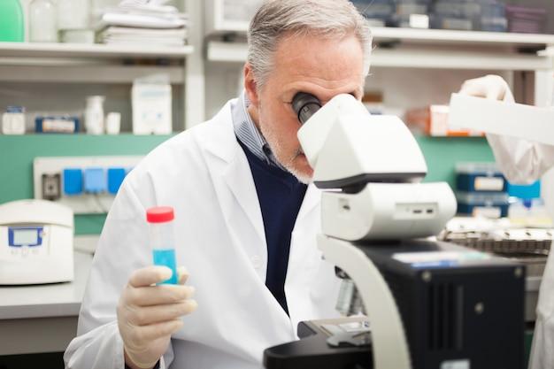 Leitender wissenschaftler bei der arbeit in einem labor