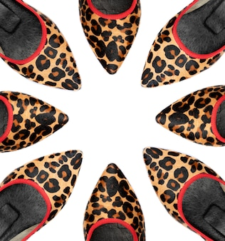 Leopardfrauenschuhe auf whitewithraum, zum ihres textes hier einzufügen