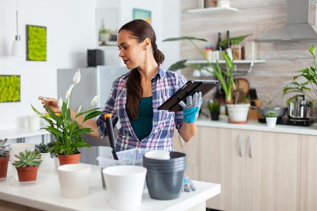 Lesen sie über heimtextilien auf einem tablet-pc, während sie pflanzen in der küche überprüfen