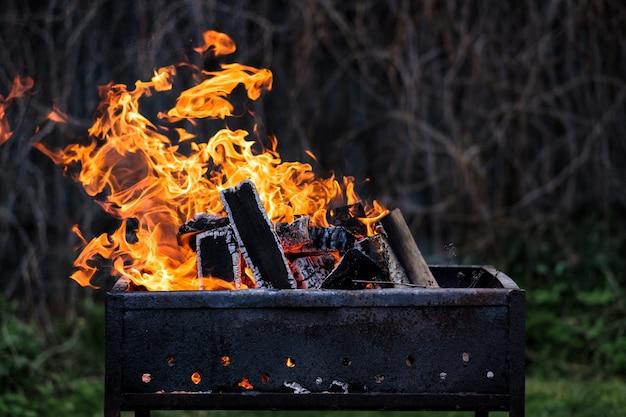 Leuchtend orangefarbenes feuer aus brennendem birkenholz.