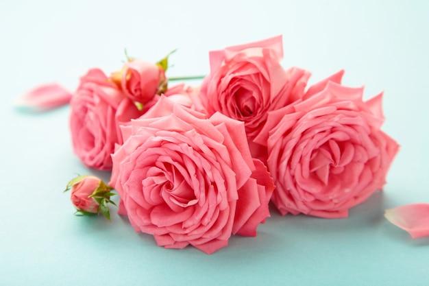 Leuchtend rosa rosen auf blau