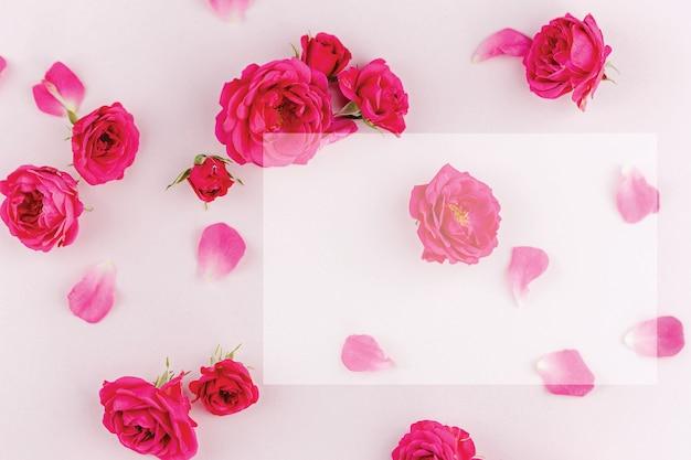 Leuchtend rosa rosenknospen auf einer zarten oberfläche