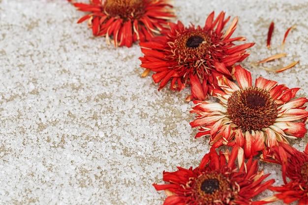 Leuchtend rote blütengerbera auf natürlichem baumwolltuch und grobweißen salzkristallen. natürliches blumiges fon. spa-hintergrund.
