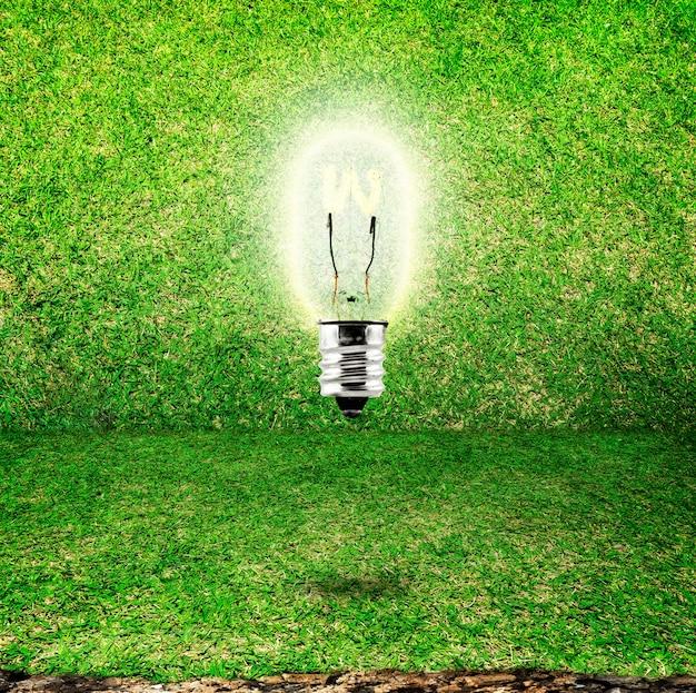 Leuchtende birne im grasraumhintergrund, eco idee