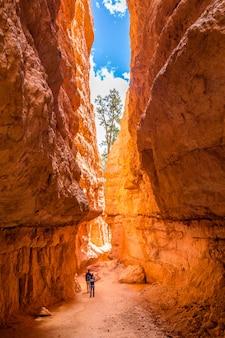 Leute auf dem wandern von reise in bryce canyon national park, utah, usa