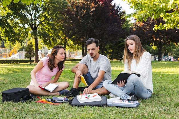 Leute, die im park studieren
