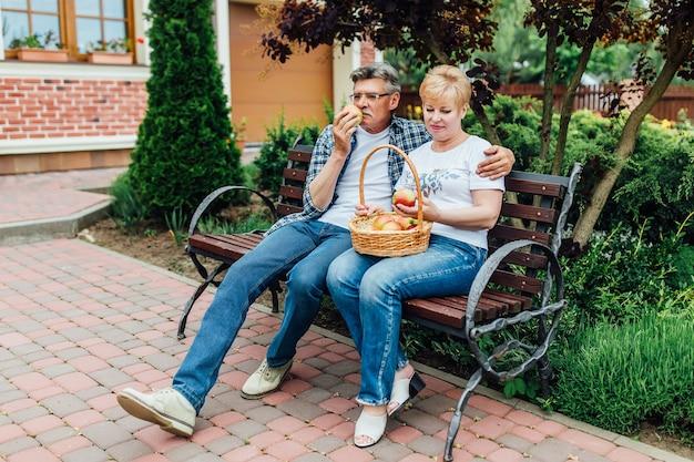 Leute mit korb, die äpfel pflücken. älteres gärtnerpaar. schönes konzept.