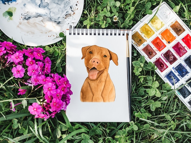 Liebenswerter, hübscher welpe von schokoladenfarbe. schöne zeichnung mit aquarellen. nahansicht. konzept der pflege, erziehung, gehorsamstraining und aufzucht von haustieren