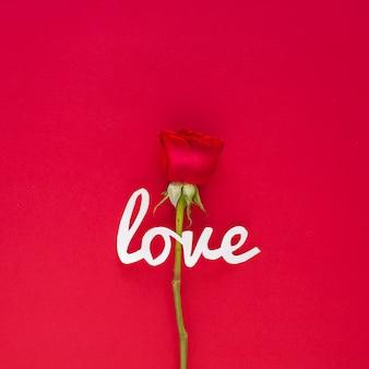 Liebesaufschrift mit rosafarbener blume auf tabelle