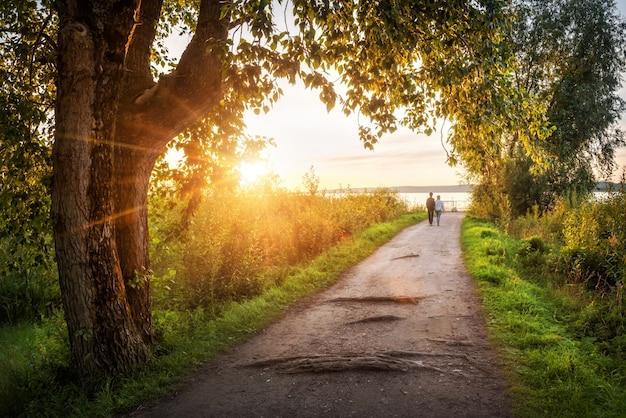 Liebhaber gehen entlang einer gasse zum see in der stadt galich in der region kostroma