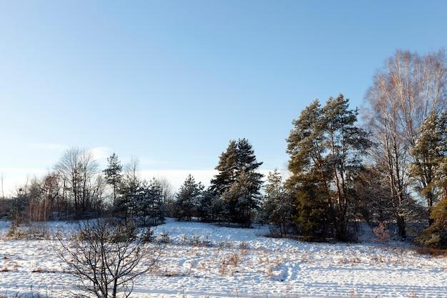 Liegender schnee nach dem letzten schneefall