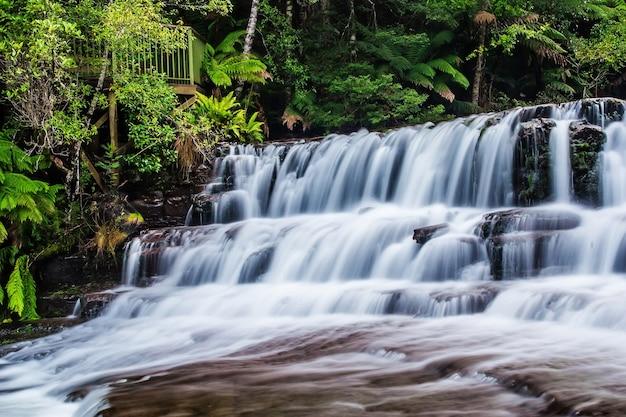 Liffey fällt staatsreserve in der midlands-region von tasmanien, australien.