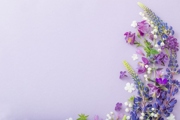 Lila, blaue, rosa blumen auf papier