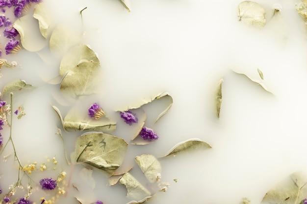 Lila blüten in weiß gefärbtem wasser