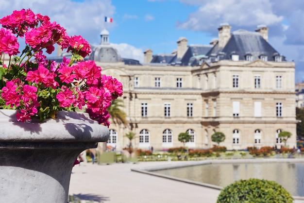 Lila blumen vom garten des luxemburg-palastes
