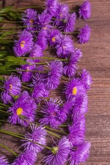 Lila dekorative gänseblümchen auf hölzernem hintergrund. kreatives blumenkonzept, flache lage, platz für text