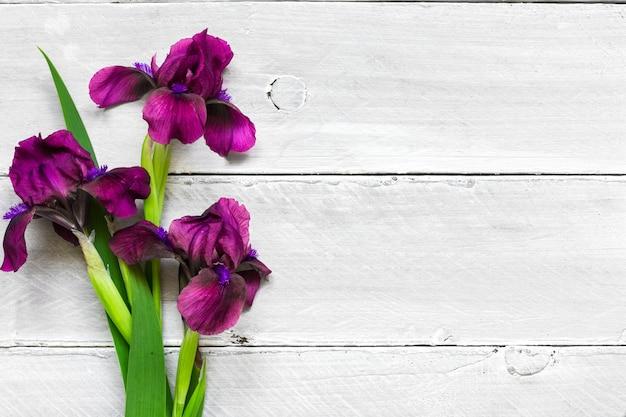 Lila irisblumenstrauß auf weißem hölzernem hintergrund. flach liegen. draufsicht mit kopierraum