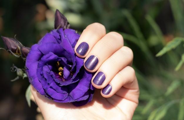 Lila nageldesign. weibliche hand mit lila maniküre, die eustoma-blume hält
