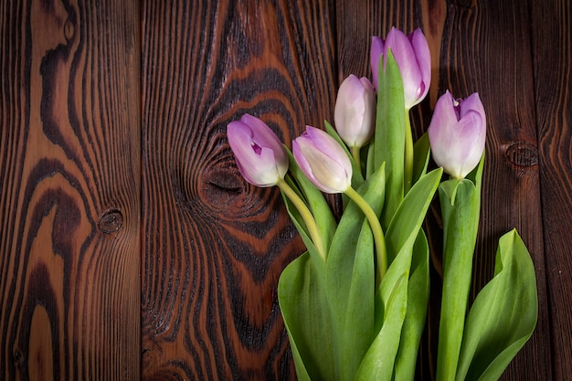 Lila tulpen auf einem dunklen hölzernen hintergrund