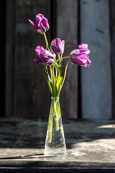 Lila tulpen in einer vase