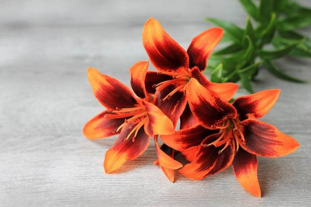 Lilien auf einem hölzernen hintergrund. natürlicher hintergrund, blühende lilienglocken, kopienspase.