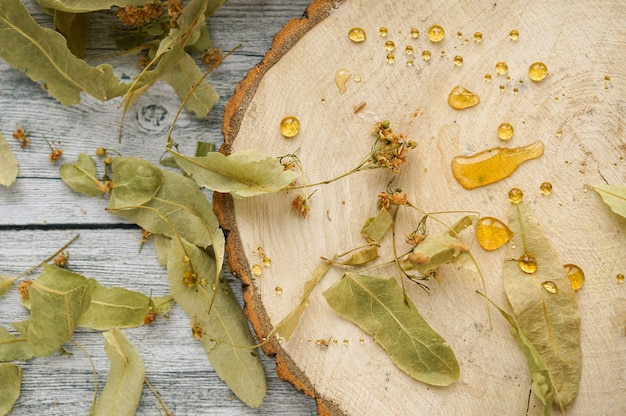 Lindenblätter und blüten auf holzscheibe