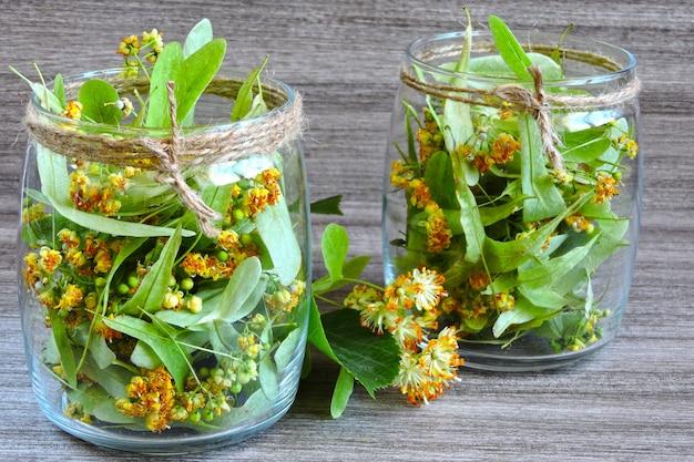 Lindenblüten in einem glas. ernte von linden-tee. linden tee. heilender kräutertee.