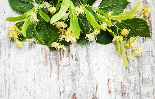 Lindenblumen auf dem tisch